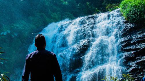 Abbey Falls in Madikeri